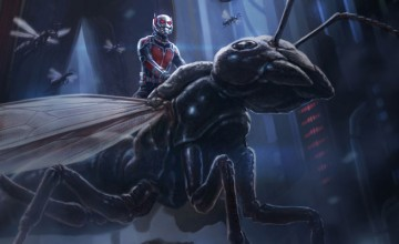 Ant-Man shooting begins