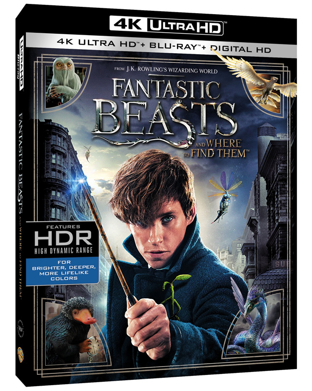 Fantastic Beasts and Where to Find Them 4K Blu-ray cover art